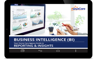 Business Intelligency Reporting & Insights
